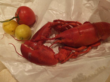 Yum ... lobster!